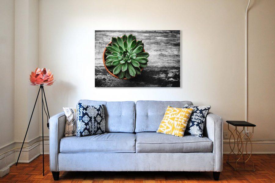 Plantje in pot op canvas