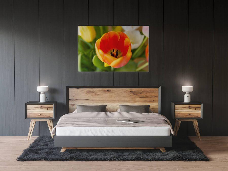 Oranje Tulp Poster - Bloemen Wanddecoratie