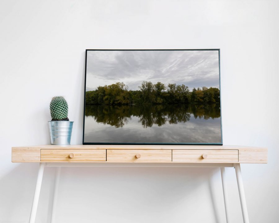 Trees Reflection - Natuur Wanddecoratie